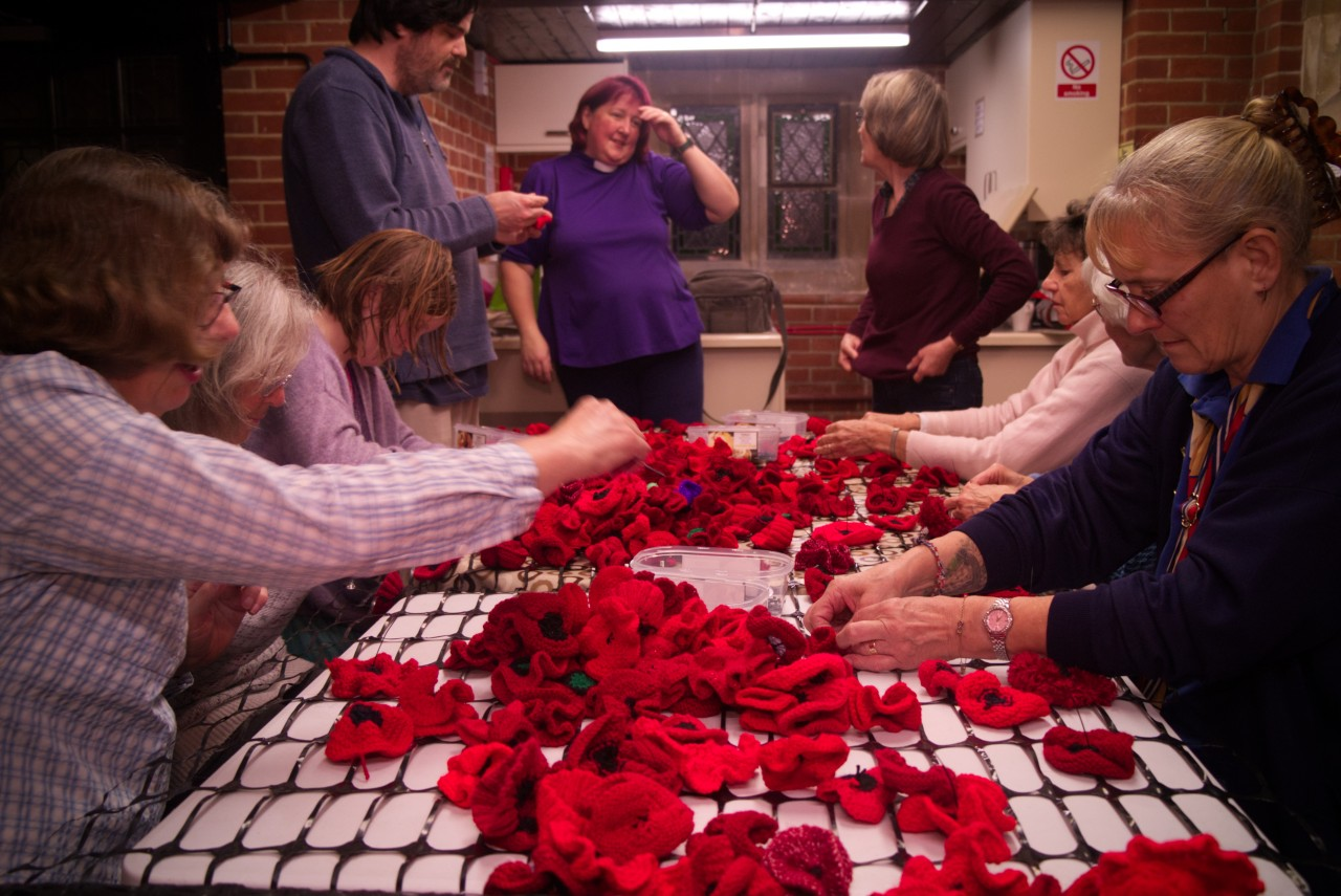Group Assembling poppies