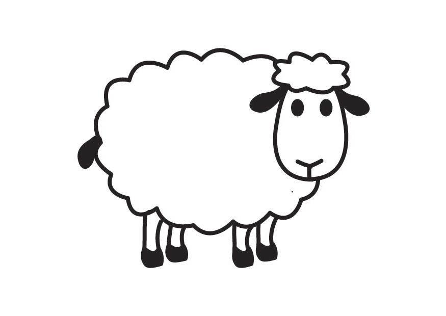 Cartoon sheep image